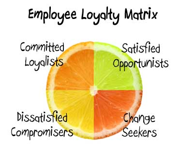 Employee Survey Demo Loyalty Matrix  Insightlink